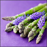 4 Reasons to Grow Your Own Asparagus