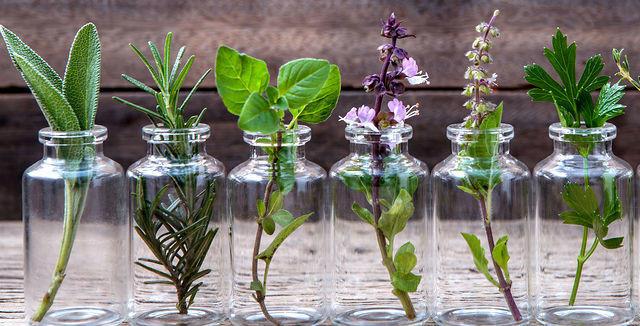 How To Create A Culinary Herb Garden