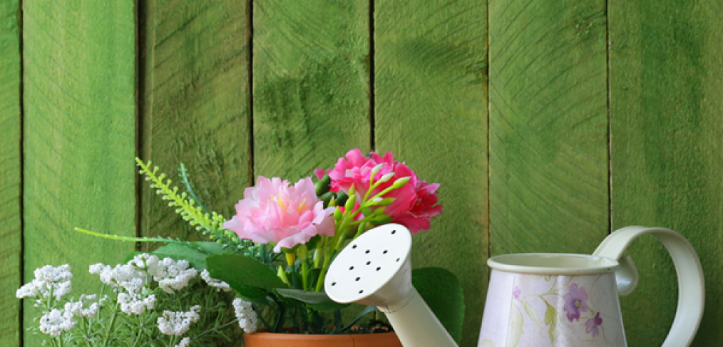 July Gardening Tips for the Pacific Northwest