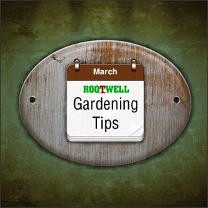 March Gardening Tips for the Pacific Northwest