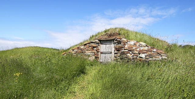 & Everything You Need to Know About an Amazing Root Cellar