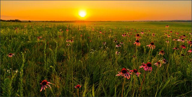 American prairies