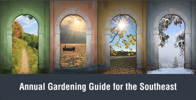 Annual Gardening Guide for the Southeast