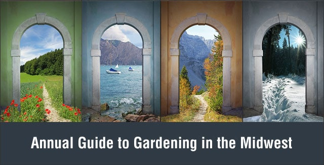 Annual Guide to Gardening in the Midwest