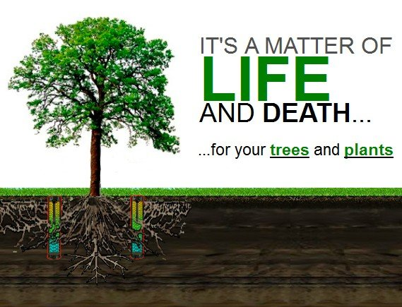 It's a matter of life and death for your trees and plants