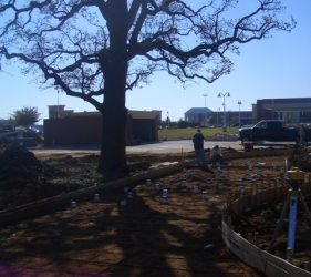 colleyville mcdonalds 1 - Deep Root Aeration Tubes | Rootwell