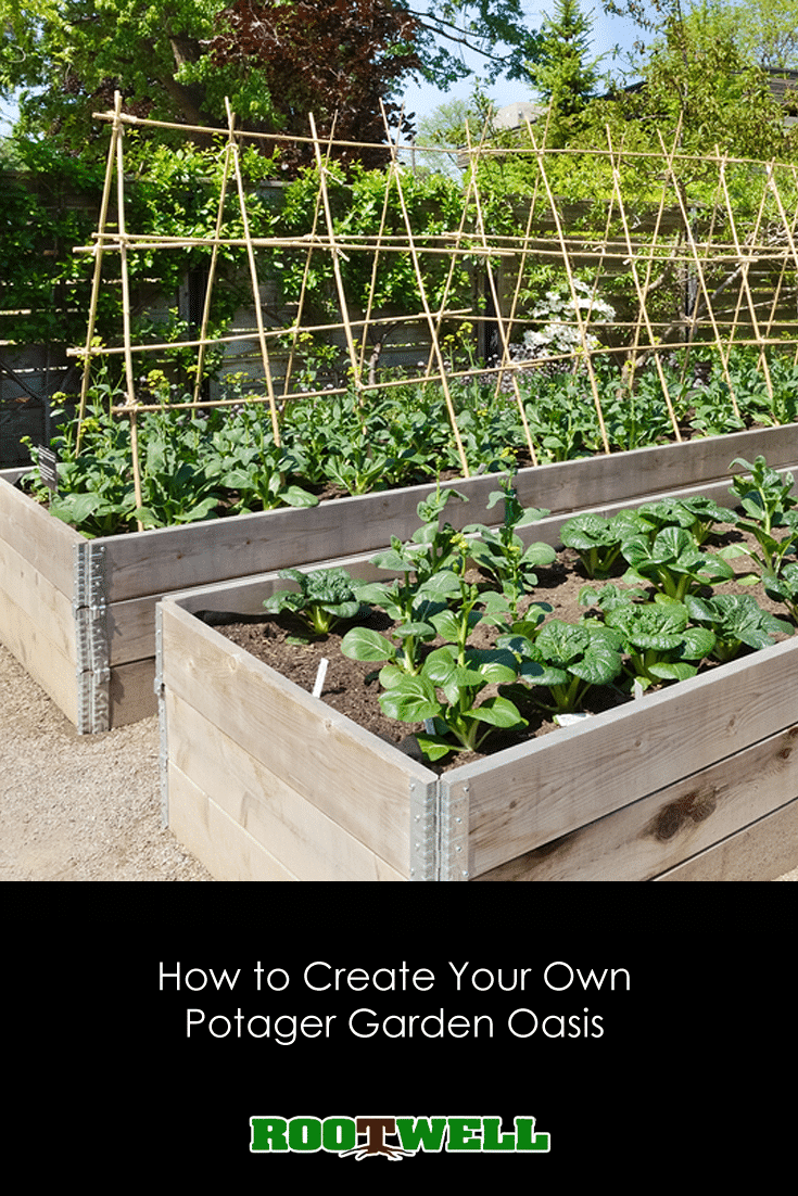 The French potager garden concept is a unique and beautiful form of gardening. Learn how to create one in the space right outside your back door.