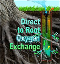 Direct to root oxygen exchange - Rootwell Tree Watering Bag Alternatives