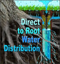 Direct to root water distribution