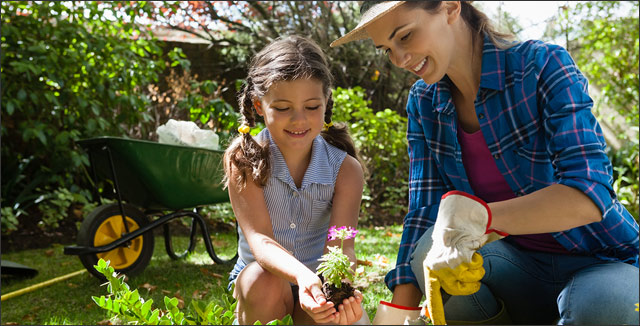 Reasons why gardening is good for your health