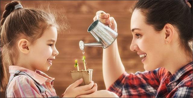 Gardening strategies