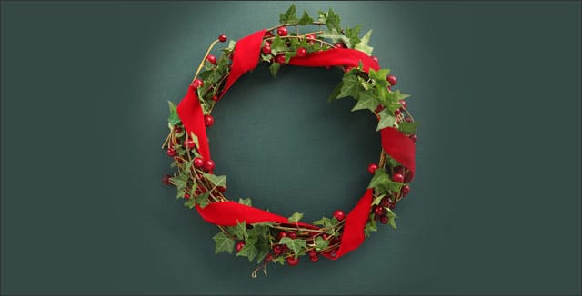 Ivy - The Christmas Magic and History Behind It