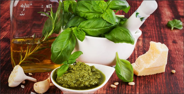 Organic Basil: Everything You Need to Know