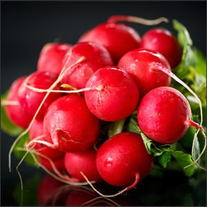 How to Grow Radishes in 5 Simple Steps