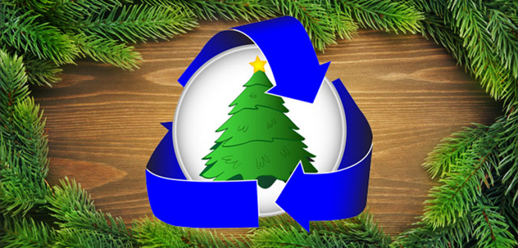 5 Ways You Can Recycle Christmas Trees