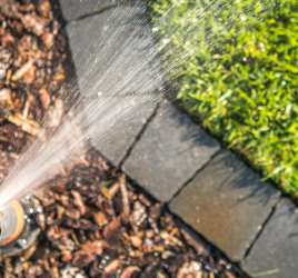 Sprinkler system, mulchHow to save money watering your lawn and trees