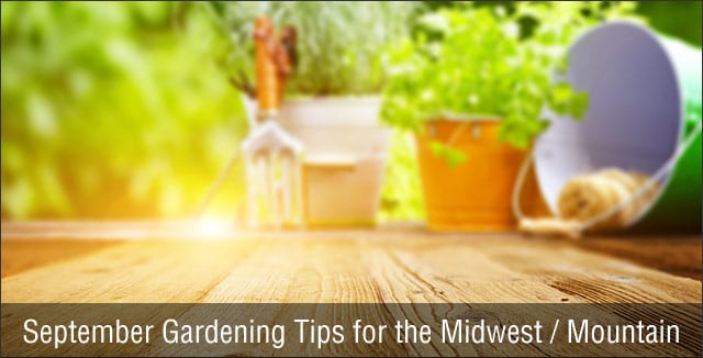 September Gardening Tips for the Midwest / Mountain