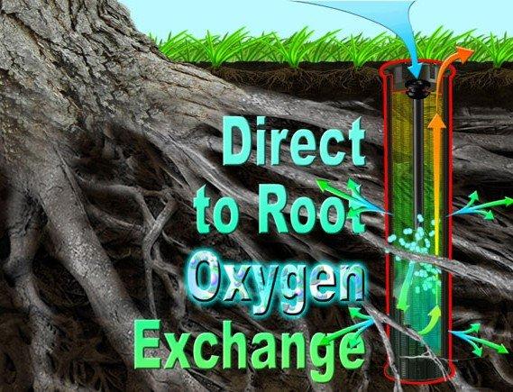 Direct to root oxygen exchange