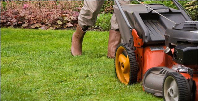 Strategies to Bring Your Spring Lawn Back to Life