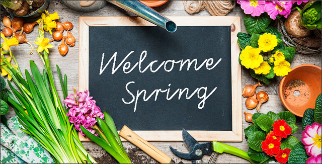 5 Tips And Tricks For Your Spring Garden